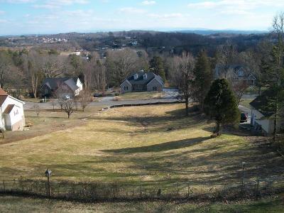 Lenoir City Residential Lots & Land For Sale: 485 Bona Vista Lane