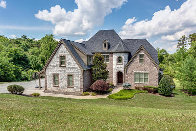 Knoxville Single Family Home For Sale: 12215 Channel Point Drive
