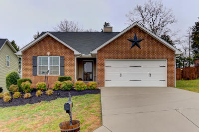 Powell Single Family Home For Sale: 1747 Thebes Lane