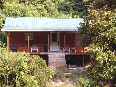 Sevier County Single Family Home For Sale: 12360 Chapman Hwy