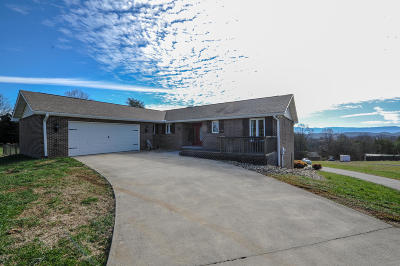 Kodak Single Family Home For Sale: 1203 Whaleys Overlook