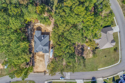 Knoxville Residential Lots & Land For Sale: 4305 Platinum Drive