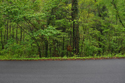 Pigeon Forge Residential Lots & Land For Sale: Lot 4bj Walker Tr