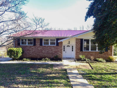 Clinton Single Family Home For Sale: 316 Holbrook Subdivision Lane