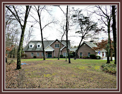 Dandridge, Sevierville Single Family Home For Sale: 2168 Ranch Rd