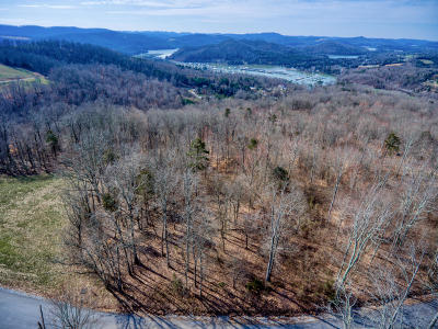 Claiborne County Residential Lots & Land For Sale: Lot #249 Tanzanite Tr