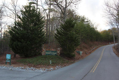 Sevierville Residential Lots & Land For Sale: 2 Lots 56e Chamberlain & 57e Harvest