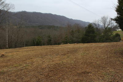 Anderson County, Campbell County, Claiborne County, Grainger County, Hancock County, Hawkins County, Jefferson County, Union County Residential Lots & Land For Sale: Wolfe Circle Rd