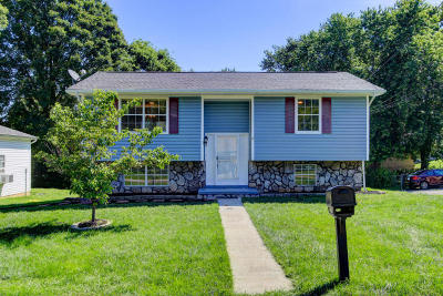 Knoxville Single Family Home For Sale: 3118 Brunswick St