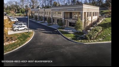 Knoxville Commercial For Sale: 12748 Kingston Pike