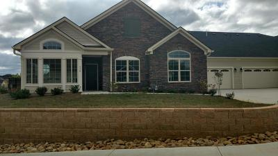 Knoxville Single Family Home For Sale: 938 Pryse Farm Blvd