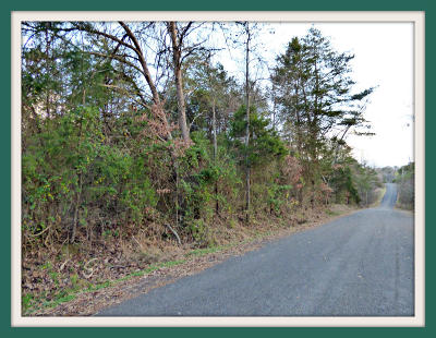 Anderson County, Campbell County, Claiborne County, Grainger County, Hancock County, Hawkins County, Jefferson County, Union County Residential Lots & Land For Sale: Lot 6 Ranch Rd