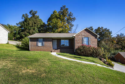Knoxville Single Family Home For Sale: 8044 Florence Gardens Rd