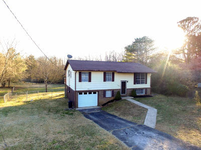 Knoxville Single Family Home For Sale: 4402 Mace Lane