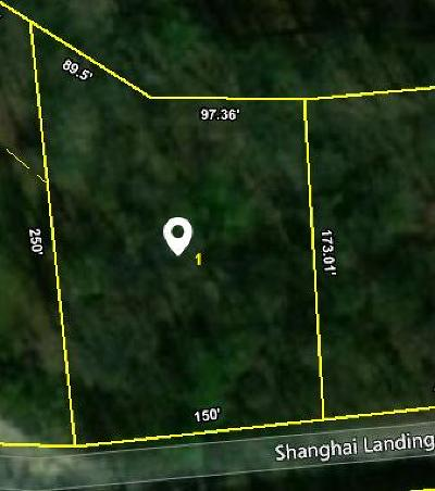 The Pointe at Shanghai, The Point At Shanghai Residential Lots & Land For Sale: Shanghai Landing Lane