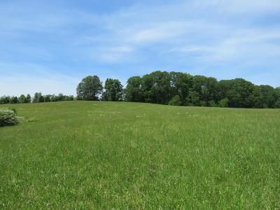 Knoxville Residential Lots & Land For Sale: 1717 Long Farm Way