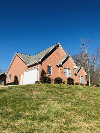 Andersonville Single Family Home For Sale: 371 Red Hill Rd