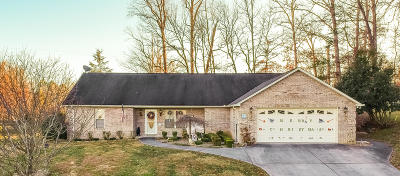 Sevierville Single Family Home For Sale: 2513 Friar Wood Lane