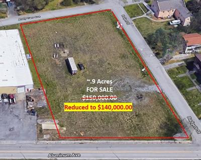 Blount County Commercial For Sale: 150 Aluminum Ave