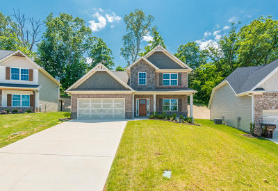 Knoxville Single Family Home For Sale: 3373 Flagstaff Lane