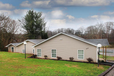 Lenoir City Single Family Home For Sale: 300 Kagley Drive