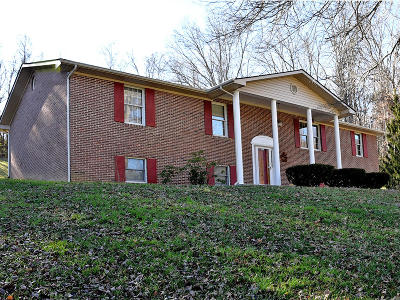 Campbell County Single Family Home For Sale: 107 Hope Lane