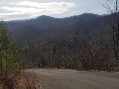 Sevierville Residential Lots & Land For Sale: 2481 Happy Hollow Rd