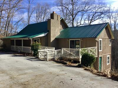 Anderson County, Campbell County, Claiborne County, Grainger County, Union County Single Family Home For Sale: 569 Hiwassee View Drive