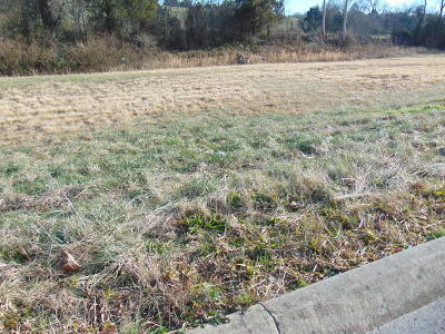 Claiborne County Residential Lots & Land For Sale: Danielle Court