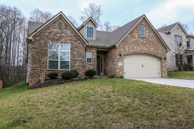 Knoxville Single Family Home For Sale: 3331 Teal Creek Lane