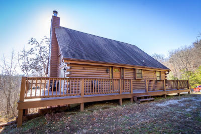 New Tazewell Single Family Home For Sale: 385 Wildcat Hollow Rd