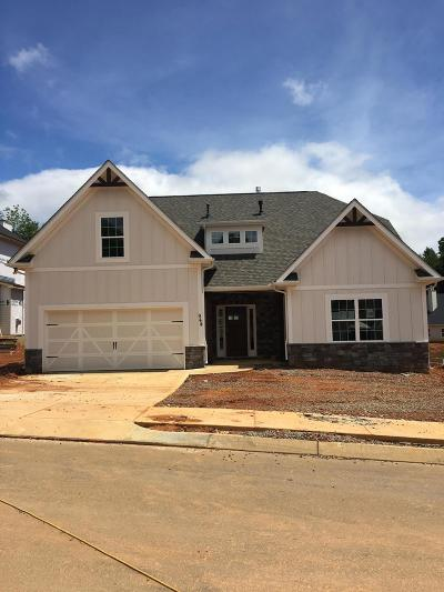 Knoxville Single Family Home For Sale: 944 Festival Lane