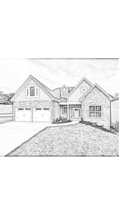 Knoxville Single Family Home For Sale: 2028 Highlands Ridge Lane, Lot 7