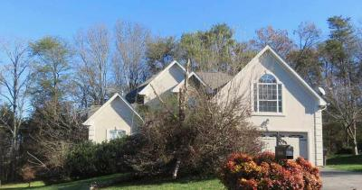 Knoxville Single Family Home For Sale: 1936 Saint Gregorys Court