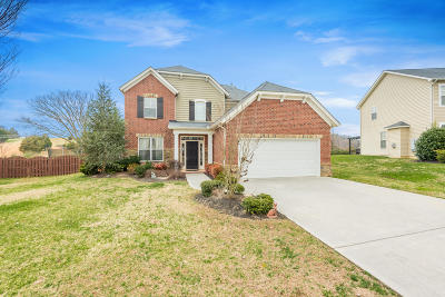 Knoxville Single Family Home For Sale: 8913 Wavetree Drive