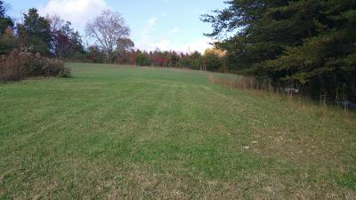 Knox County Residential Lots & Land For Sale: 4329 McKamey Rd
