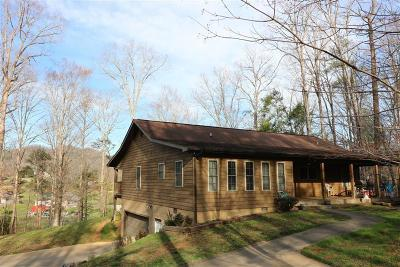 Sevier County Single Family Home For Sale: 4015 Roundtop Drive