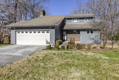 Sevierville Single Family Home For Sale: 320 Birchwood Ln