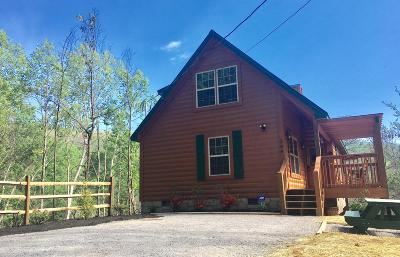 Gatlinburg Single Family Home For Sale: 306 N Circle Drive