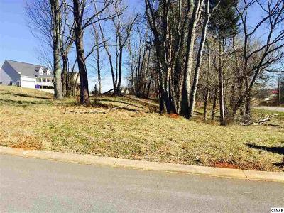 Sevierville Residential Lots & Land For Sale: Lot #23 Lori Ellen Court