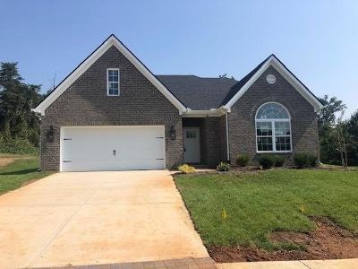 Knoxville Single Family Home For Sale: 12333 Cotton Blossom Lane