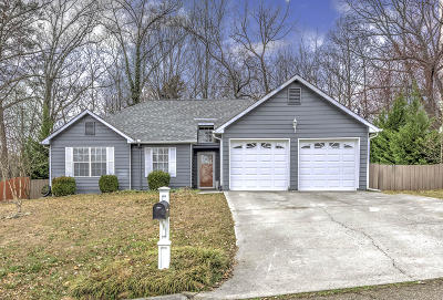Knoxville Single Family Home For Sale: 3256 Kingsmore Drive