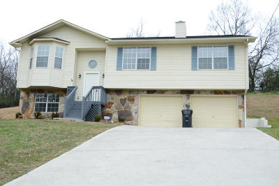 Knoxville Single Family Home For Sale: 4245 Larigo Drive