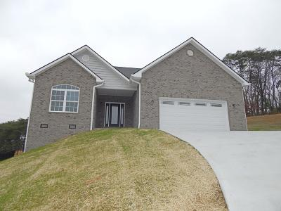 Maryville Single Family Home For Sale: 610 Peachtree Drive
