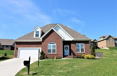 Knoxville Single Family Home For Sale: 3345 Parrish Hill Lane