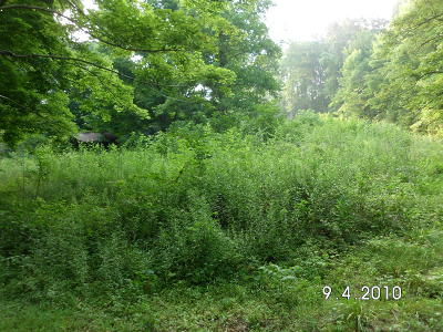 Andersonville Residential Lots & Land For Sale: Upper Clear Creek