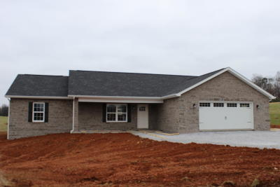 Sevier County Single Family Home For Sale: 1985 Rays Gap Rd