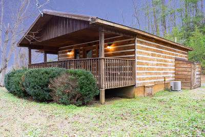 Pigeon Forge Single Family Home For Sale: 4424 Grindstone Ridge Rd