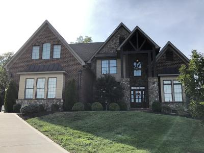 Knoxville Single Family Home For Sale: 12303 Swan Falls Way
