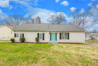 Knoxville Single Family Home For Sale: 2963 Edgewood Ave